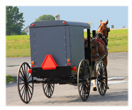S-Amish-buggy.jpg